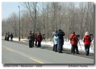 sortie 2009- Club D'ornithologie Trois-Rivières