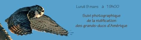 grand duc-TR-14-2-09